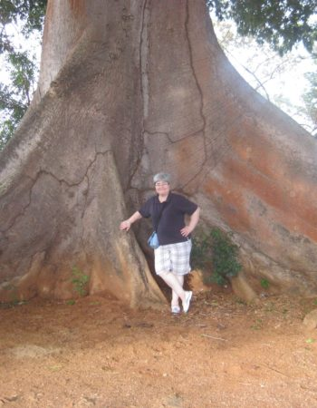 A big tree in Panama and Expat Suzanna
