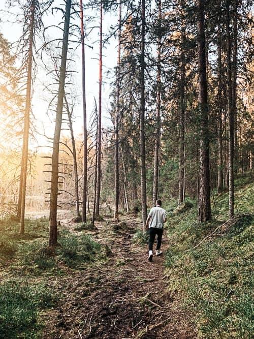 Walking through the beautiful woods in Talinn, Estonia